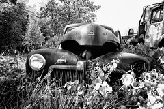 (soulshine59) Tags: blackandwhite decay massachusetts rusty canon5d oldcars vintagecars rustyoldcars