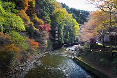 Takao (bagua8) Tags: autumn canon landscape kyoto canonefs1022mmf3545usm canonefs1755mmf28usmis canoneos550d