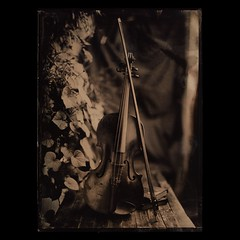 . (czarnobialykwadrat!) Tags: life wet still plate violin ambrotype wetplate 5x7 collodion 13x18 autaut 18x13