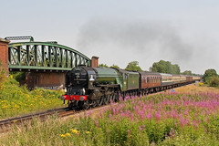 Sunny Steam Scene (Treflyn) Tags: train northampton tour pacific cathedrals rail railway loco junction class steam locomotive express a1 railtour winchester tornado flyover charter basingstoke peppercorn newbuild 462 60163 worting battledown