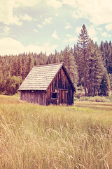 Summer Memories - Strawberry, CA (Melanie Alexandra Photography) Tags: summer mountains field sunshine woodland strawberry cabin pinetrees