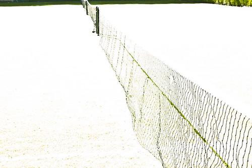 #50 Snow tennis