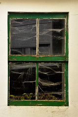 ventana olvidada - Forgot window (Antonio Mesa Latorre) Tags: verde green window de ventana spider araa roja tela
