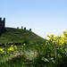 """Dunstanburgh Castle from Golf Course • <a style=""""font-size:0.8em;"""" href=""""https://www.flickr.com/photos/21540187@N07/8154211798/"""" target=""""_blank"""">View on Flickr</a>"""