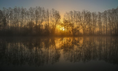 Breaking Light (Ashley Hemsley) Tags: camera morning blue trees light england orange sun mist lake 3 black cold reflection art nature water colors beauty weather silhouette fog sunrise canon skyscape season point landscape geotagged photography sussex mirror spring pond focus flickr artist view shot angle mark walk south united horizon kingdom location symmetry east explore reflect 5d rise dslr siluet beams breaking waterscape coutryside hailsham downash