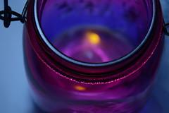 Sweet Summer Memories (Caroline.32) Tags: macro catchycolors jar nikond3200 wheniwasachild lighteningbugs extensiontube20mm macromondays 18140mm