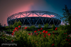 Olympic Sky (Alex Chilli) Tags: park uk flowers sky colour london landscape fuji stadium may xa2 east explore poppy poppies olympic stratford in 2016 explored