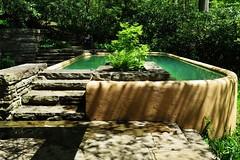 guest pool (Summ....) Tags: franklloydwright fallingwater natureconservancy plungepool bearrun img2270