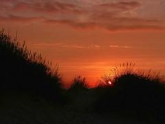 Oostduinkerke Zonsondergang (2) (Johnny Cooman) Tags: sunset sea panorama mer beach strand landscape zonsondergang belgium belgique pano dunes dune belgi wolken zee westvlaanderen nuages bel duinen aaa cloudscapes dunas landschap flanders belgien dnen westflanders wolk oostduinkerke blgica koksijde vlaanderen flandern belgia flandre flandes  koksijdeoostduinkerke flemishregion flhregion wolkformatie wolkformaties panasonicdmcfz200