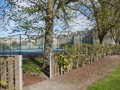 University Hall behind a tennis court and trees, 2016 May 12 (Dunnock_D) Tags: uk blue trees sky white clouds fence buildings court scotland unitedkingdom fife britain path standrews tenniscourt