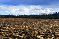 Ploughed field near Tring, Hertfordshire (Snapshooter46) Tags: earth chilterns farming soil agriculture tring hertfordshire furrows ploughedfield arableland