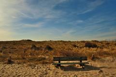 bankje in de duinen (Omroep Zeeland) Tags: natuur zeeland duinen landschap walcheren bankje rusten westhove