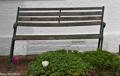 Wonky bench (Katy Wrathall) Tags: england garden spring may eastyorkshire 2016 eastriding 127366 2016pad