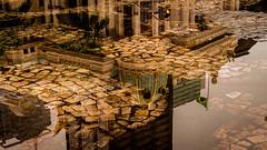 Reflections (Fran Caparros) Tags: brazil brasil rio de janeiro cinelandia floriano square plaza rain lluvia thatre teatro south america sudamerica green verde flag bandera amarillo empedrado charco water agua art arte downtown historico historic architecture