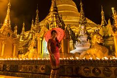 Ultra Realistic (Cho Shane) Tags: portrait beautiful beauty wow wonderful pagoda amazing nice saturated nikon pretty quality shwedagon yangon buddhist flash wideangle flashphotography portraiture stunning myanmar beautifulcolors dslr naturalbeauty wonderland amateur ultrawide buddhisttemple breathtaking prettygirl shwedagonpagoda beautifulgirl wonderlust portraitphotography buddhistshrine amazingview beautifulcomposition amazingshot stunningbeauty amazingbeauty stunningview breathetaking amazingsight dslrcamera amazingcomposition dslrphotography stunningmoment nikond5300