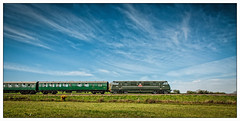 Blue and green... (AlanP) Tags: railway swanage warship d832 corfecommon