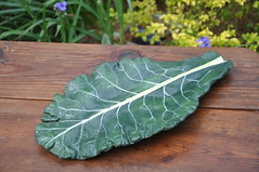 Collard Wall Art or Platter 375 Sheila's Concrete Garden (Sheila's Concrete Garden) Tags: wallart handpainted gardenart tabledecor leafart cementleaf collardleaf sandcastcementleaf cementwallart httpwwwsheilasconcretegardencom