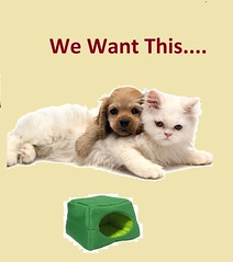 Trending and Designer Pet Accessories (shoplamania) Tags: dog pet leather cat for beds products accessories handbag