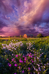 Songs of Days Gone By (Phil~Koch) Tags: life camera morning travel blue light sunset summer portrait sky sun storm art love nature colors beautiful field lines weather yellow vertical wisconsin clouds rural sunrise canon season landscape outdoors photography hope dawn living office twilight heaven mood ray peace purple natural earth unity horizon fineart country joy arts scenic meadow inspired dramatic beam journey environment serene inspirational popular emotions hdr lilacs horizons trending