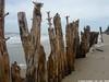 P1190366_a (O Suave Gigante) Tags: estuary wexford coastalerosion wexfordharbour curracloe hookpeninsula hookheadlighthouse ballinesker sladeharbour northslob sladecastle ravenwoodnaturereserve theravennaturereserve ravenpointloop laffanfamily 1860sfaminereliefworksprogramme