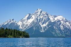 Grand Teton National Park, WY (stonejd1946) Tags: us unitedstates places moose wyoming grandtetonnp
