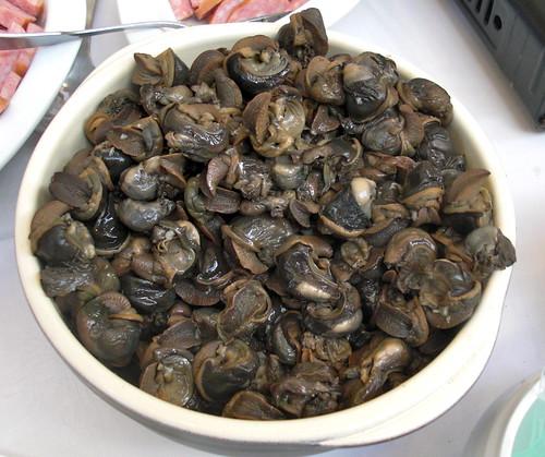 snail befor