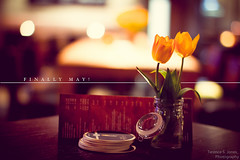 Finally May! [explored] (Terence S. Jones) Tags: summer germany 50mm restaurant essen ef50mmf12l finallymay canon7d lightroom4