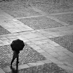 Alone through the rain | Seul sous la pluie (2) (fanjoandco) Tags: canon eos 7d toulouse capitole capitolium placeducapitole