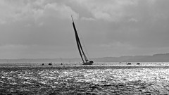 Round the island 2012. Icap Leopard (Phil_J_123) Tags: island sailing yacht round isle wight roundtheisland