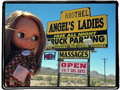Angel's Ladies