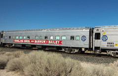 Ringling Bros Barnum Bailey Circus Train (3227) (DB's travels) Tags: california railroad up unionpacific tempcrr