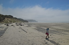 Windy (nebulous 1) Tags: beach nature girl oregon landscape sand nikon wind windy fogbank blowingsand nearflorence nebulous1 carlgwashburnstateparkbeach