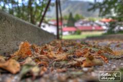 Autumn already ?! (Matthieu H.) Tags: city travel autumn summer color leaves canon photography eos bokeh matthieu already h slovenia traveling moutain hdr tolmin 2012