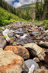 Tahoma Creek (chasingthelight10) Tags: travel trees mountains nature photography landscapes events places mountrainiernationalpark vistas washingtonstate canyons forests creeks wildernesstrails westsideroad tahomacreek