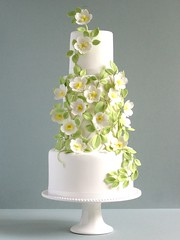 Rose and Trellis Wedding Cake (~Made With Love~) Tags: flowers rose cake weddingcake sugar trellis fondant greenandwhite gumpaste sugarpaste sugarflowers