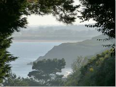 au bout du tunnel (laetitiablableuse) Tags: world france tree landscape brittany bretagne breizh what coastline arbre zorn finistere littoral plouguerneau