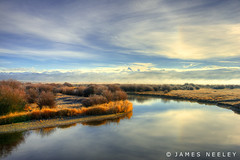 Rise Up (James Neeley) Tags: fog landscape idaho grandtetons tetons tetonriver tetonvalley jamesneeley raineybridge