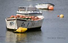 IMG_2347 (Carmen T. Chaguaceda) Tags: iso100 mar agua huelva f56 75300mm barcas pesca puntaumbria pulperas canon1100d