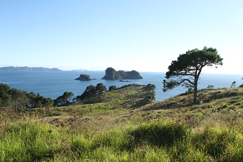 Cathedral Cove Walkway