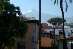 Ile de Tenerife (Canaries/Espagne) (PierreG_09) Tags: espaa spain ile canarias tenerife teide canaries espagne volcan icoddelosvinos