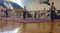 stefanou_15_5_2016_knockdown_3431
