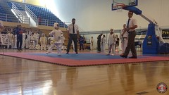 stefanou_15_5_2016_knockdown_3429