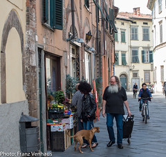 160523_Lucca_Pisa-751852.jpg (FranzVenhaus) Tags: trees italy streets green castles towers churches restaurants lucca it tuscany walls toscana oldtowns