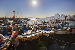 Busan, Korea (Albert Photo) Tags: sea port boat outdoor korea transportation busan vehicle seafood shipping southkorea seaport filmfestival bustling