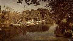 El Portet (E.Cano) Tags: sky naturaleza nature water rio river landscape boat woods agua barca embarcadero barcas
