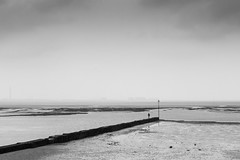 A solitary coastal moment. (ho_hokus) Tags: uk sea england blackandwhite monochrome river person coast delta coastline riverthames groyne essex westcliff southendonsea 2016 thamesestuary westcliffonsea essexcoast fujix20 fujifilmx20