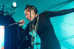 Reverie (waltzcore) Tags: festival livemusic stpaul hiphop rap reverie statefairgrounds rhymesayers soundset soundset2016