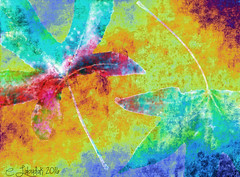 MapleLeaves (clabudak) Tags: abstract leaves photoshop maple colorful artistic