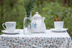 6Y1A4156-2 (lilymullen) Tags: vintage diy pretty cosplay alice teacups tablecloth teaparty throughthelookingglass