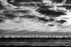 du train (xamolo) Tags: cloud sky blackwhite bw train trees dramatic arbres sunray rayon
